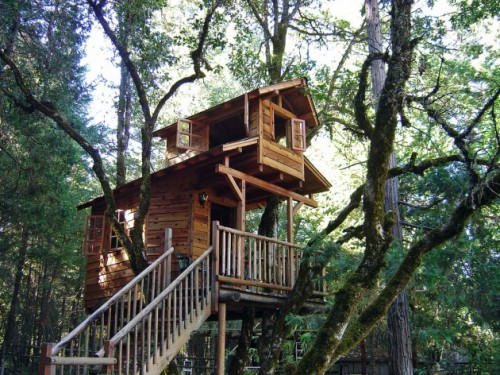 Tree-Houses-ArchitectureArtDesigns-8-630x472
